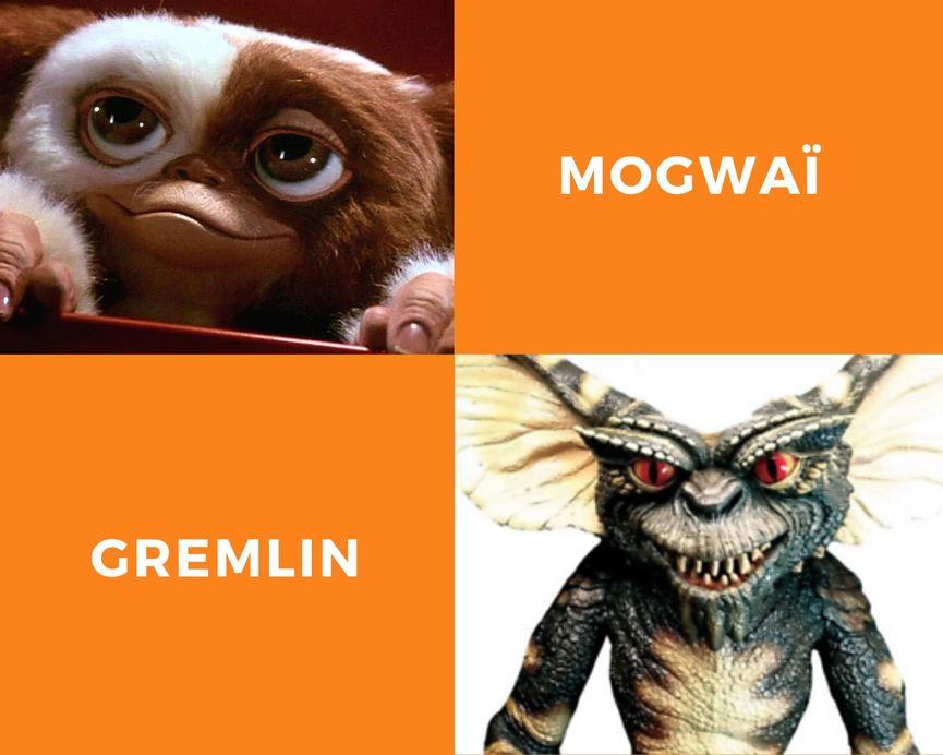 mogwai versus gremlin